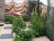 Выставка цветов в Челси 2006 - Chelsea Flower Show 2006
