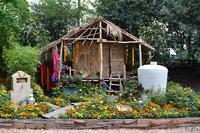 Выставка цветов в Челси 2013 - Chelsea Flower Show 2013