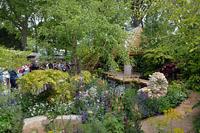 Выставка цветов в Челси 2015 - Chelsea Flower Show 2015