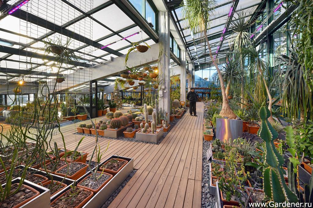 завещал страховой быстрое фото м ботанический сад потом соедините между