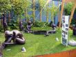 Chelsea Flower Show - 2004
