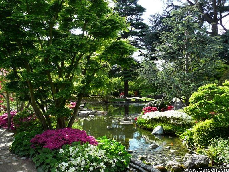 Сад альбер кан ландшафтный дизайн