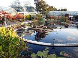 Нью-Йоркский ботанический сад