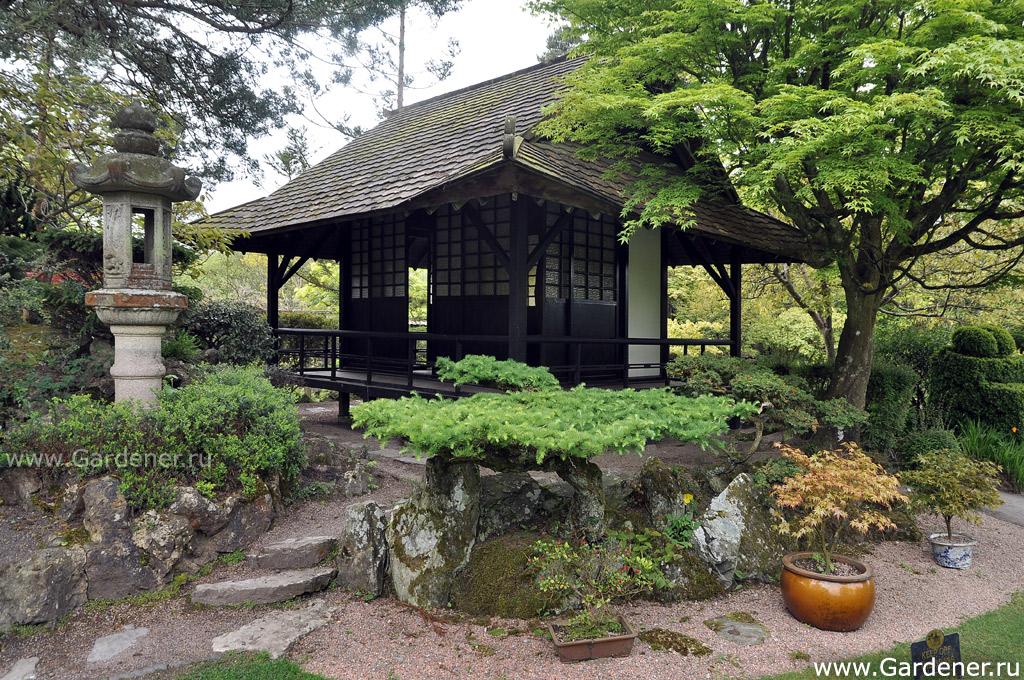 japanese garden essay