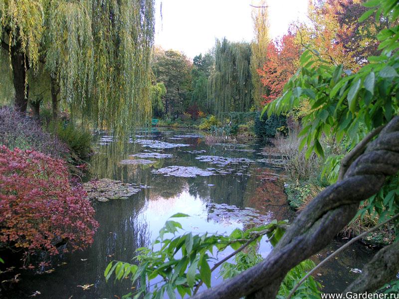 http://www.gardener.ru/gallery/parki/jiverni/25.jpg