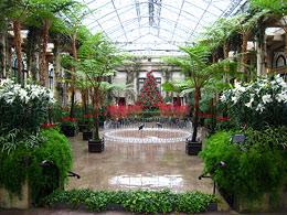 Longwood Gardens - Сады Лонгвуда