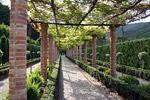 Как и большинство итальянских садов, Массей Вилла Гарден находится на крутом террасированном