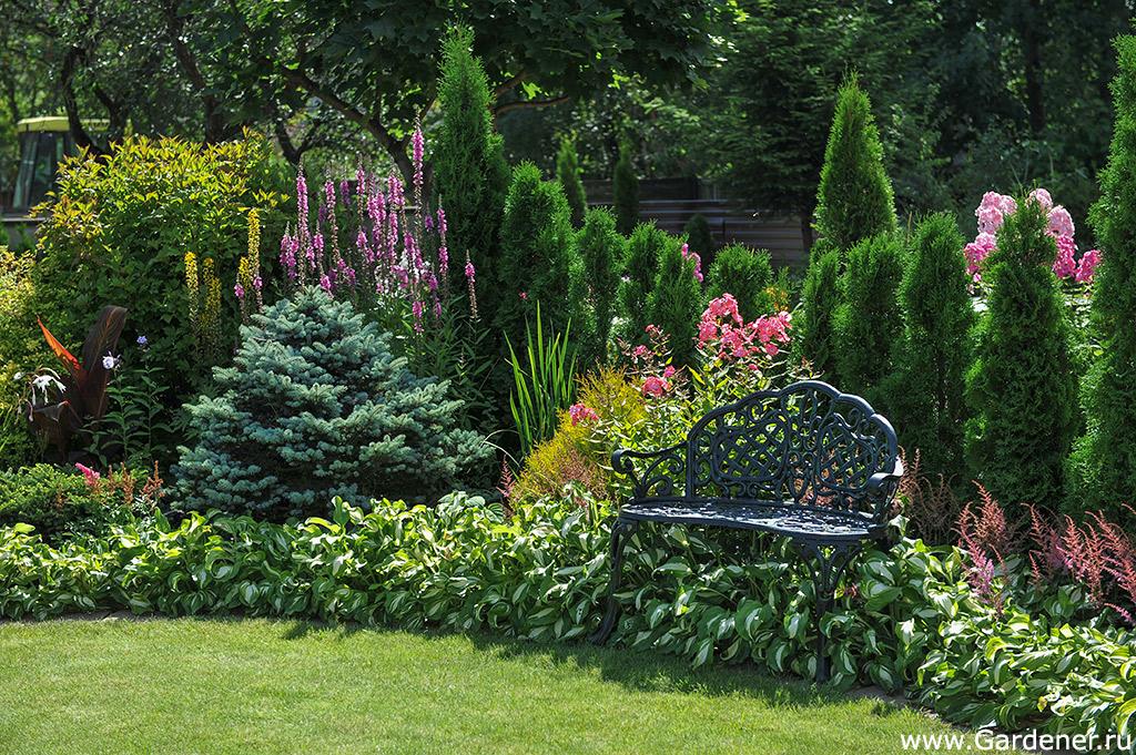 http://www.gardener.ru/gallery/parki/sad_markovskih/3.jpg