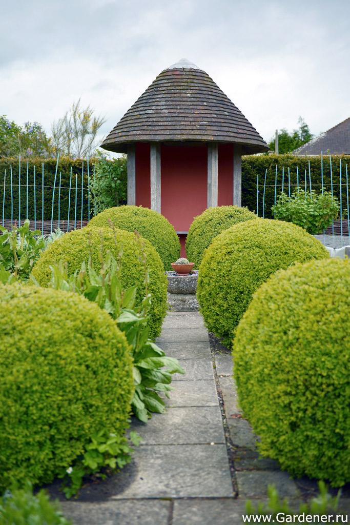 надежный дизайнерский сад марины соколовой фото редкого тембра необычайной