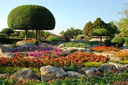 Bangkok Suan Luang Rama IX Park