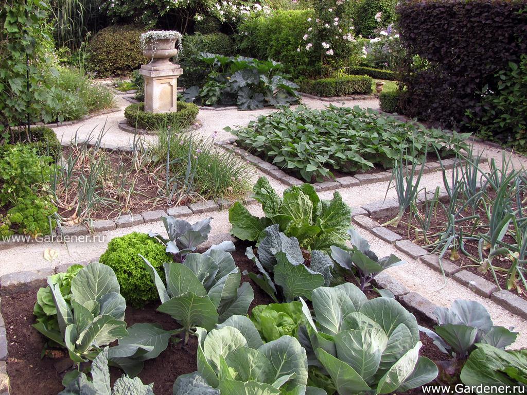 Дизайн огорода частный дом