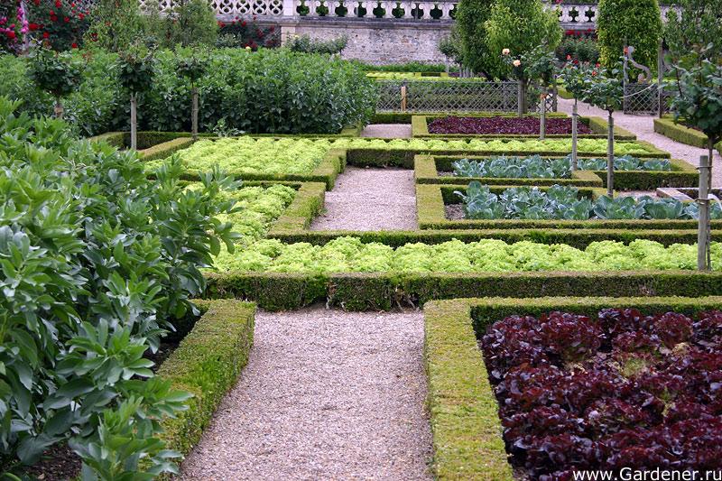 Красивый сад огород своими руками фото