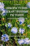 Дикорастущие лекарственные растения средней полосы России