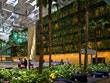 Ландшафтный дизайн - победители ASLA 2009