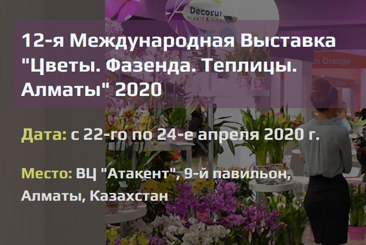 теплица новые технологии сосновка каталог 2021